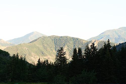 Mountains web