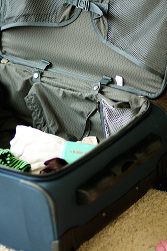 Suitcase web
