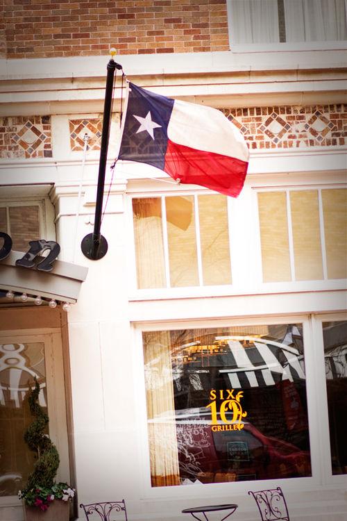 Texas web