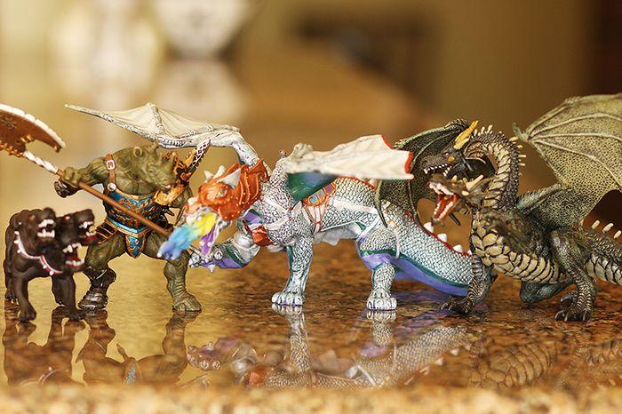 Dragons web