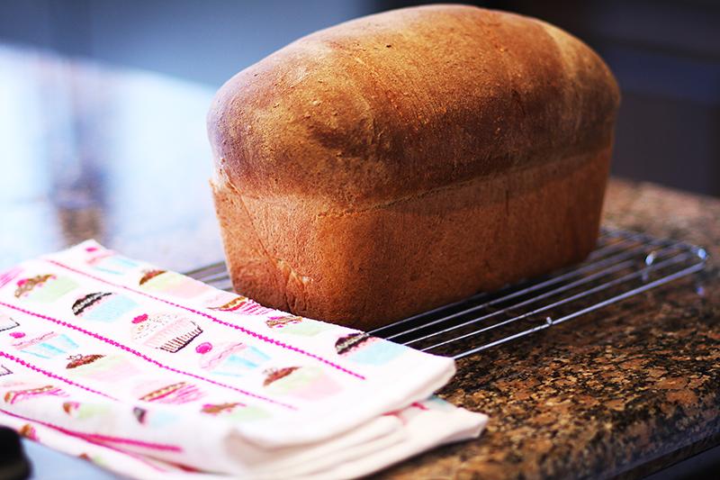Oatmeal bread web