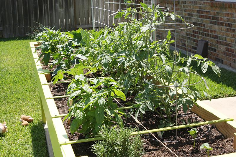 Gardenupdate1 web