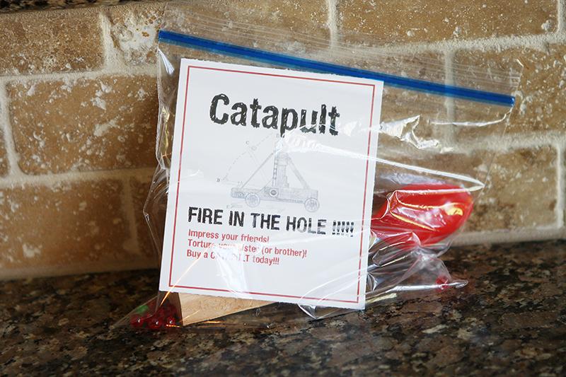 Catapult web