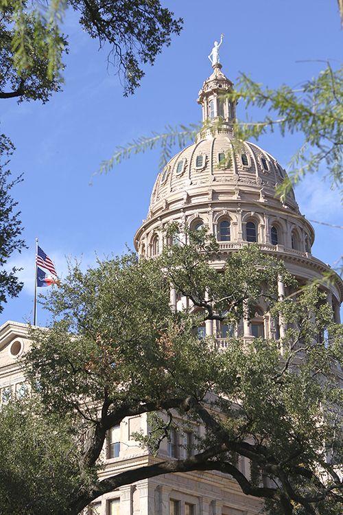 Capitol web