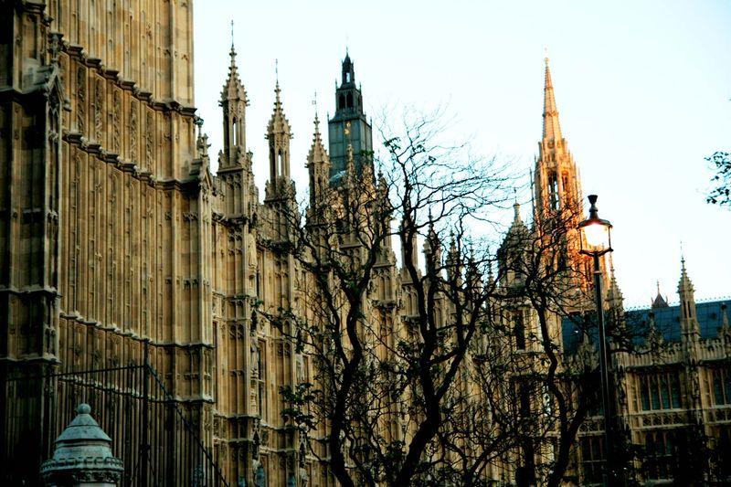 Westminster web